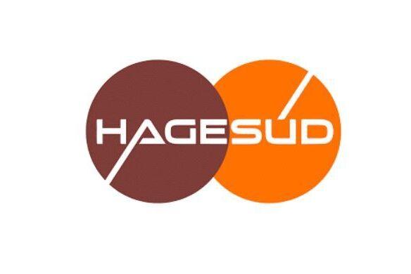Capture Hagesud